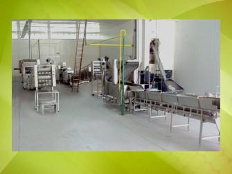 Instalacion Terminada. Lineas de Nixtamal, Nachos y Tortilla de Harina